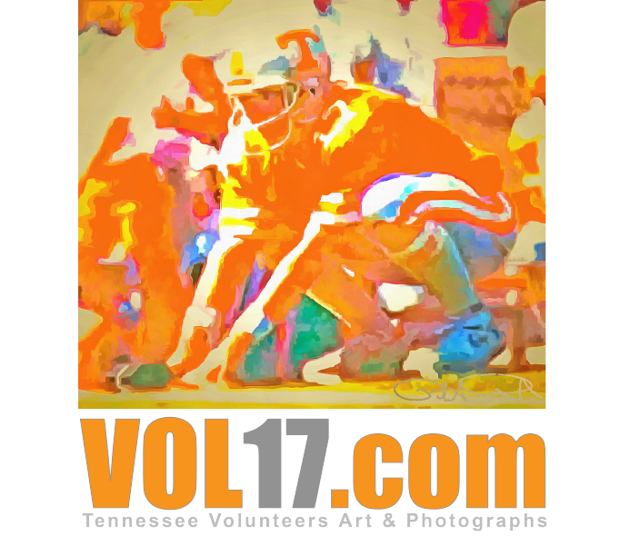 VOL17.com graphic logo icon