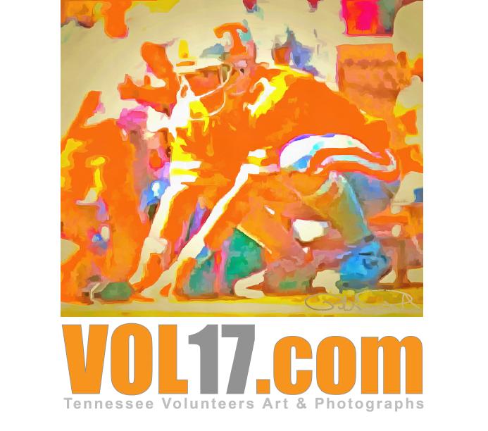 VOL17.com graphic logo icon